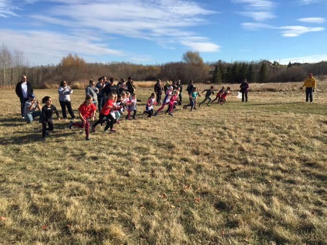 2015 Alberta Age Class Cross Country Provinicials