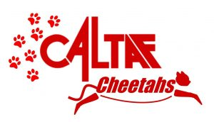 Cheetah Logo 2017